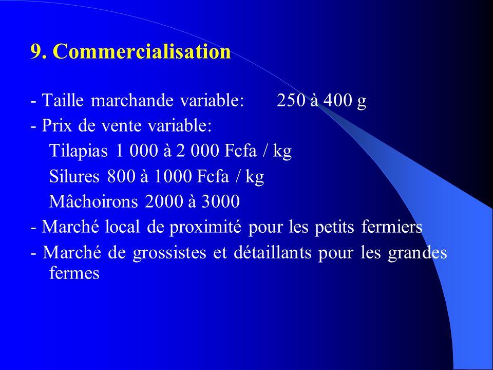 9. Commercialisation - Taille marchande variable: 250 à 400 g - Prix de vente variable: Tilapias 1 000 à 2 000 Fcfa / kg Silures 800 à 1000 Fcfa / kg