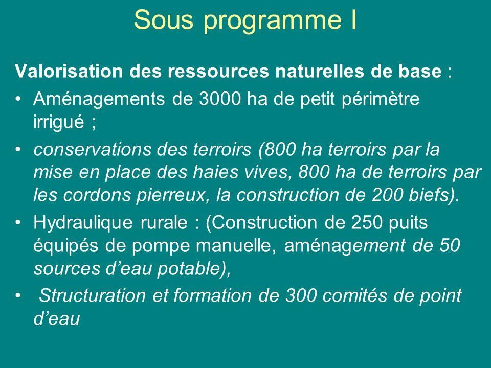 Sous programme II Intensification des cultures 9620 micro projets de cultures vivrières, 3 000 micro projets dhorticulture, 580 micro projets darboriculture fruitière.
