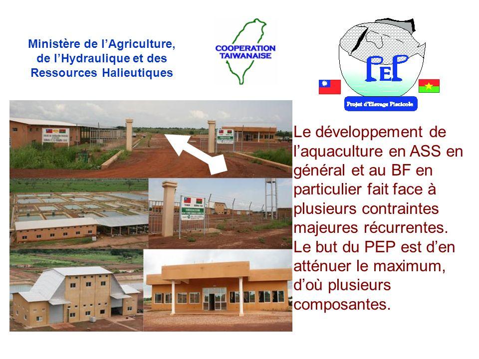 Le développement de laquaculture en ASS en général et au BF en particulier fait face à plusieurs contraintes majeures récurrentes. Le but du PEP est d
