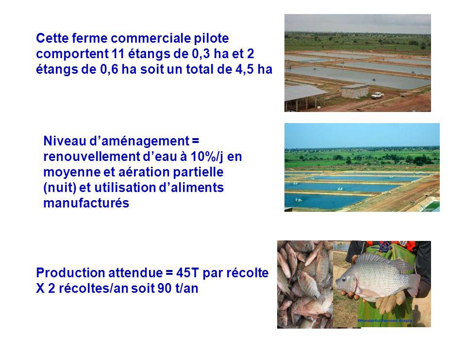 Cette ferme commerciale pilote comportent 11 étangs de 0,3 ha et 2 étangs de 0,6 ha soit un total de 4,5 ha Niveau daménagement = renouvellement deau
