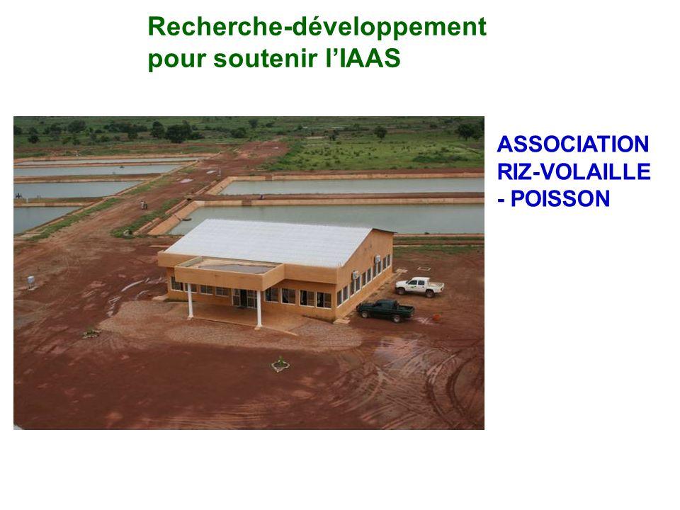 Recherche-développement pour soutenir lIAAS ASSOCIATION RIZ-VOLAILLE - POISSON