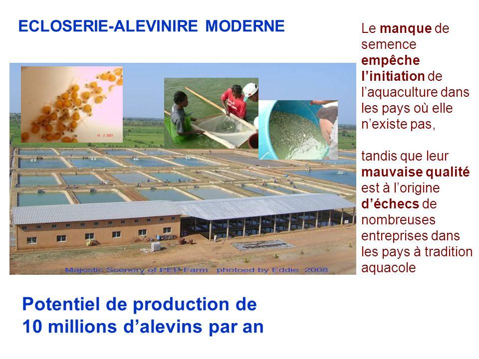 ECLOSERIE-ALEVINIRE MODERNE Le manque de semence empêche linitiation de laquaculture dans les pays où elle nexiste pas, tandis que leur mauvaise quali