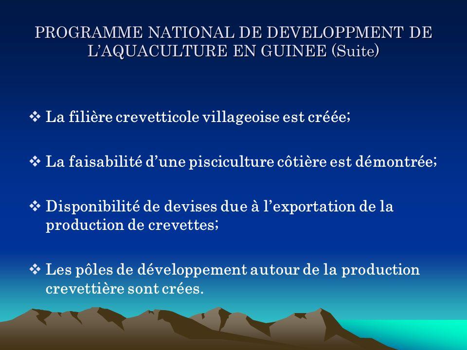 PROGRAMME NATIONAL DE DEVELOPPMENT DE LAQUACULTURE EN GUINEE (Suite) La filière crevetticole villageoise est créée; La faisabilité dune pisciculture c