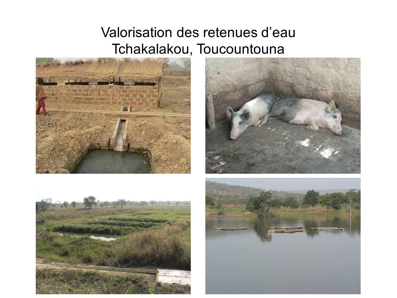 Valorisation des retenues deau Tchakalakou, Toucountouna