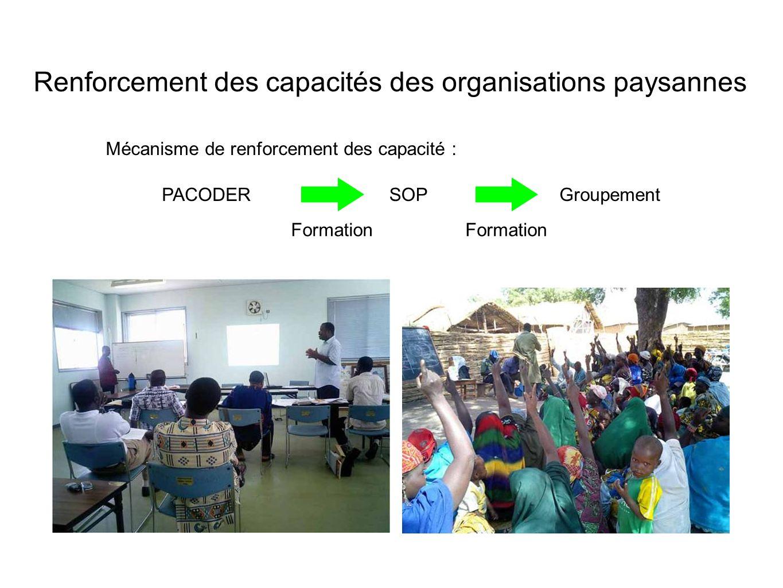 Mécanisme de renforcement des capacité : PACODERSOPGroupement Formation Renforcement des capacités des organisations paysannes