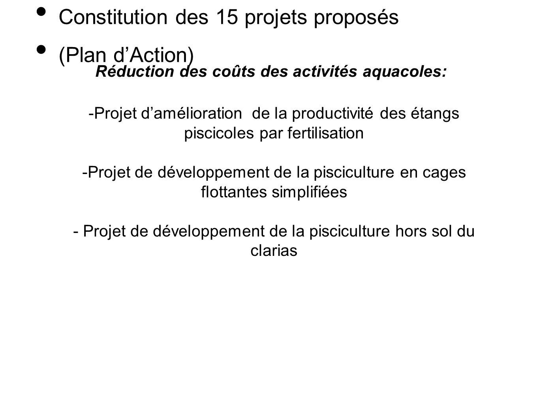 Constitution des 15 projets proposés (Plan dAction) Réduction des coûts des activités aquacoles: -Projet damélioration de la productivité des étangs p