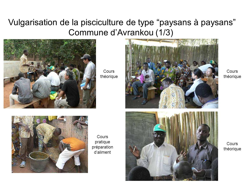 Vulgarisation de la pisciculture de type paysans à paysans Commune dAvrankou (1/3) Cours théorique Cours pratique préparation daliment Cours théorique