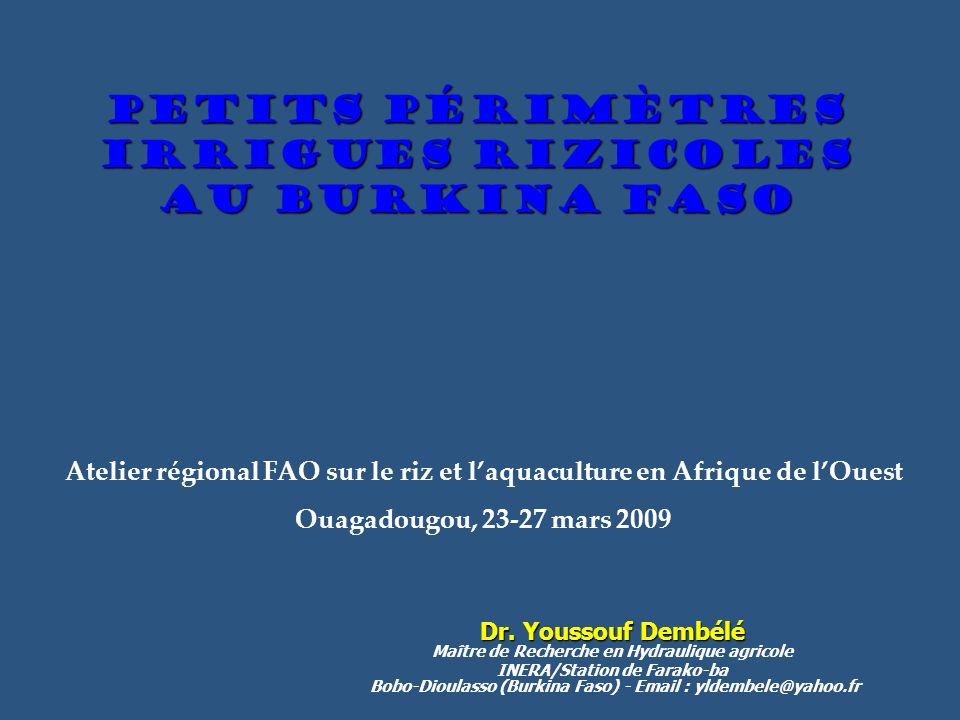 Petits périmètres IRRIGUES rizicoles au Burkina Faso Dr. Youssouf Dembélé Dr. Youssouf Dembélé Maître de Recherche en Hydraulique agricole INERA/Stati