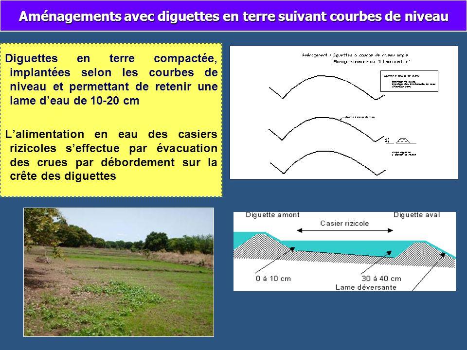 Aménagements avec diguettes en terre suivant courbes de niveau Diguettes en terre compactée, implantées selon les courbes de niveau et permettant de r