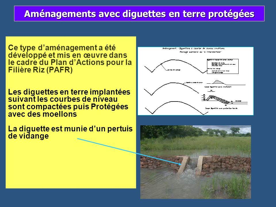 Ce type daménagement a été développé et mis en œuvre dans le cadre du Plan dActions pour la Filière Riz (PAFR) Les diguettes en terre implantées suiva