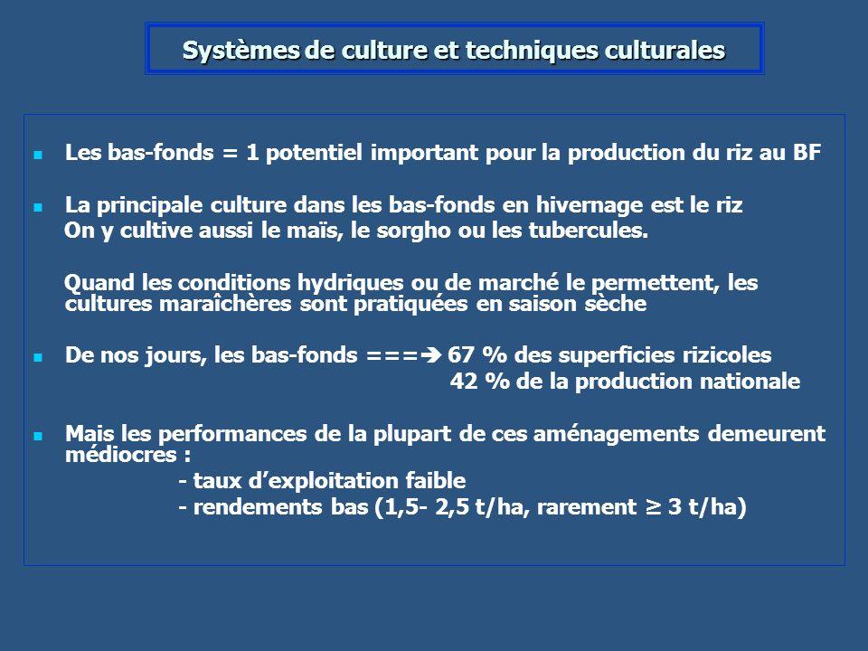Systèmes de culture et techniques culturales Les bas-fonds = 1 potentiel important pour la production du riz au BF La principale culture dans les bas-
