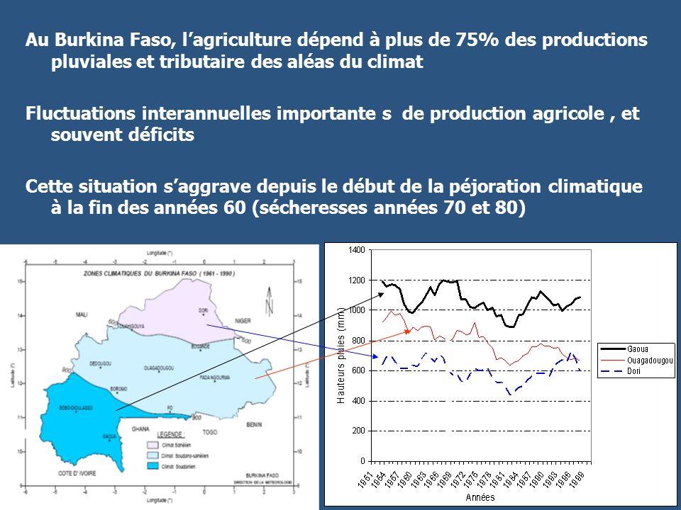Au Burkina Faso, lagriculture dépend à plus de 75% des productions pluviales et tributaire des aléas du climat Fluctuations interannuelles importante