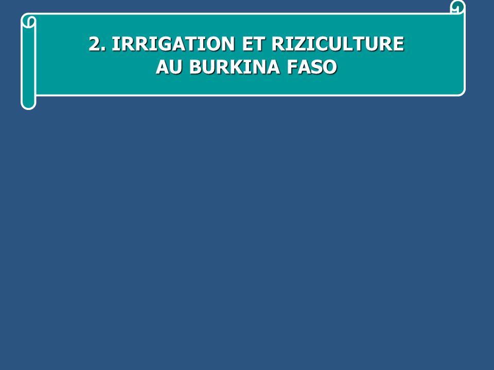 2. IRRIGATION ET RIZICULTURE 2. IRRIGATION ET RIZICULTURE AU BURKINA FASO
