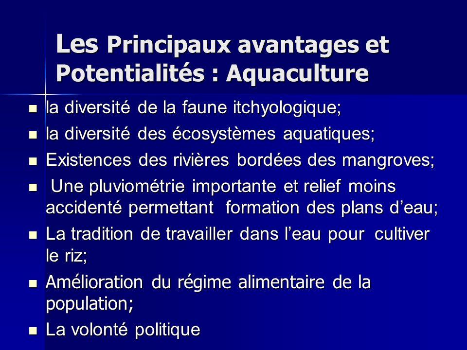 Les Principaux avantages et Potentialités : Aquaculture la diversité de la faune itchyologique; la diversité de la faune itchyologique; la diversité d