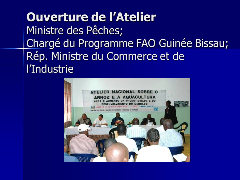 Ouverture (Cont.) Chargé du Programme FAO Guinée Bissau; –C–C–C–Contribution du Programme de cooperation entre le Japon et la FAO à lengagement de TICAD IV Ministre des Pêches; –L–L–L–La disponibilité du Gouvernement à soutenir dans la matérialisation des recommandations.