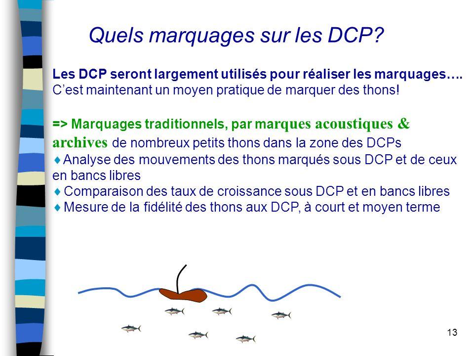 13 Les DCP seront largement utilisés pour réaliser les marquages….