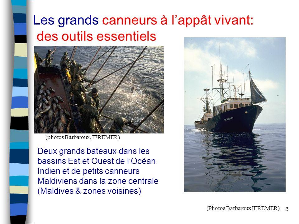 3 Les grands canneurs à lappât vivant: des outils essentiels (photos Barbaroux, IFREMER) Deux grands bateaux dans les bassins Est et Ouest de lOcéan I