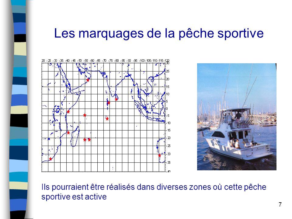7 Les marquages de la pêche sportive Ils pourraient être réalisés dans diverses zones où cette pêche sportive est active
