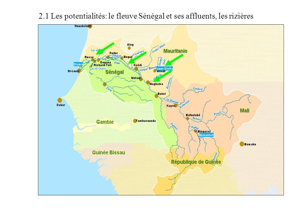 2.1 Les potentialités: le fleuve Sénégal et ses affluents, les rizières