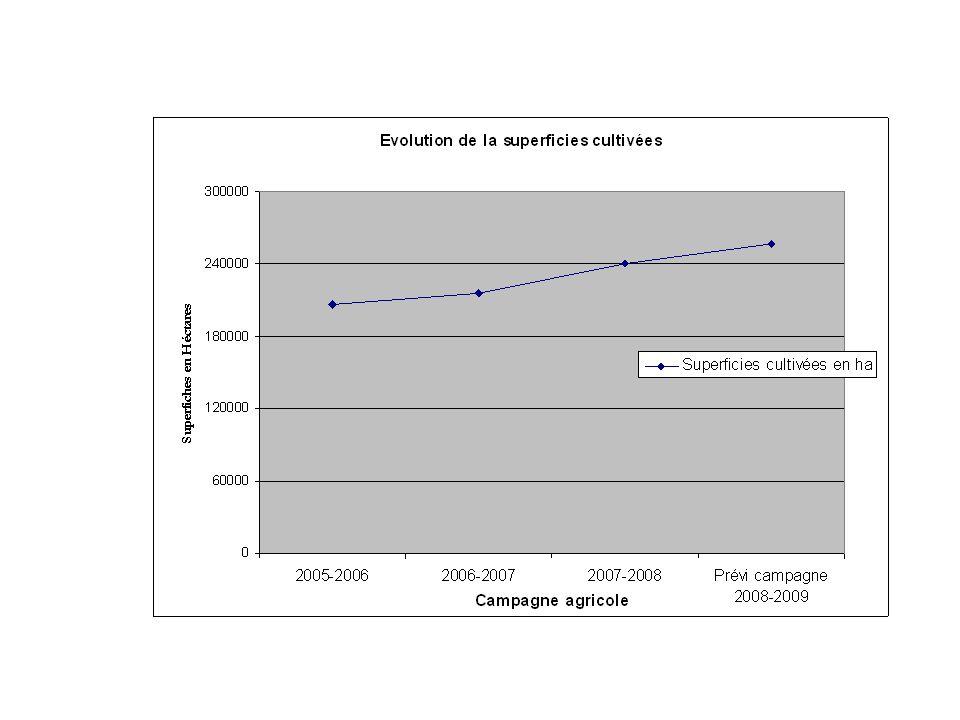 Conclusion Un effort daménagement concluant Les rendements baissent, rattrapés par les défauts daménagement et Un système de crédit à améliorer Un faible niveau de divesification