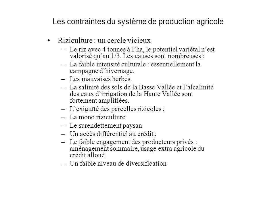 Les contraintes du système de production agricole Riziculture : un cercle vicieux –Le riz avec 4 tonnes à lha, le potentiel variétal nest valorisé qua