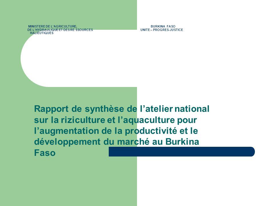 MINISTERE DE L'AGRICULTURE, BURKINA FASO DE LHYDRAULIQUE ET DES RE SSOURCES UNITE – PROGRES-JUSTICE HALIEUTIQUES Rapport de synthèse de latelier natio