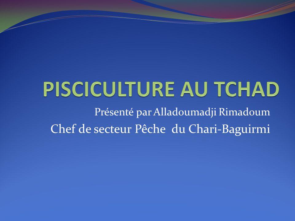 Présenté par Alladoumadji Rimadoum Chef de secteur Pêche du Chari-Baguirmi
