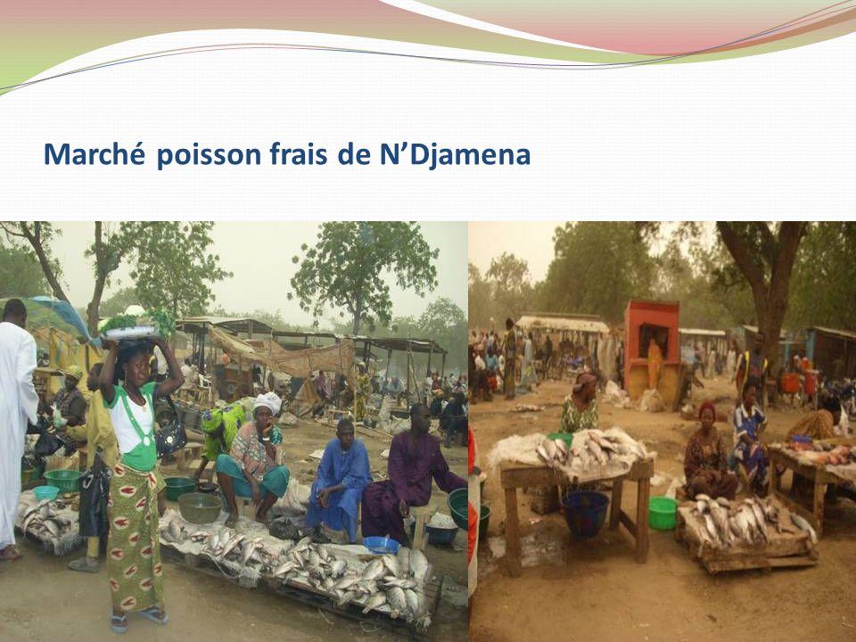 Marché poisson frais de NDjamena