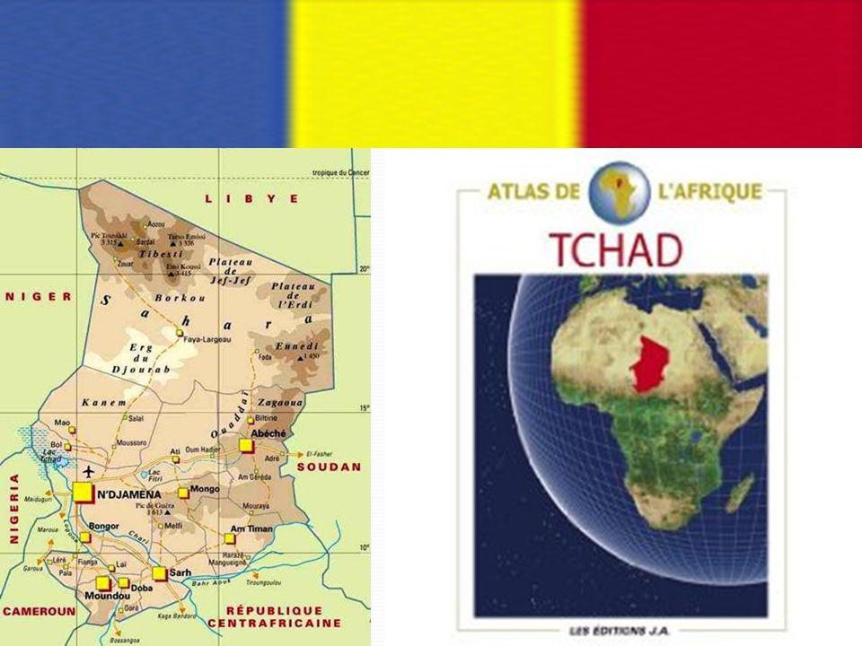 I.Histoire de la pisciculture au Tchad L es activités piscicoles ont commencé au Tchad, après les dures années de sécheresse répétées qui ont un impact fort sensible sur la production halieutique.
