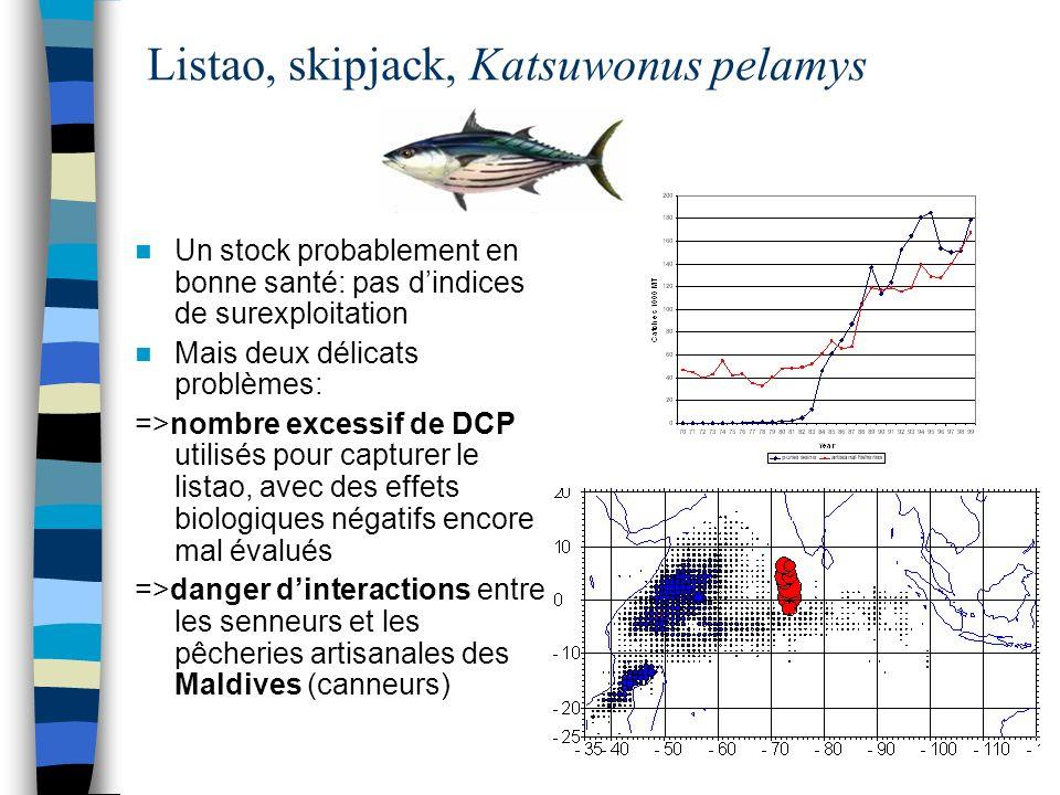 Listao, skipjack, Katsuwonus pelamys Un stock probablement en bonne santé: pas dindices de surexploitation Mais deux délicats problèmes: =>nombre exce