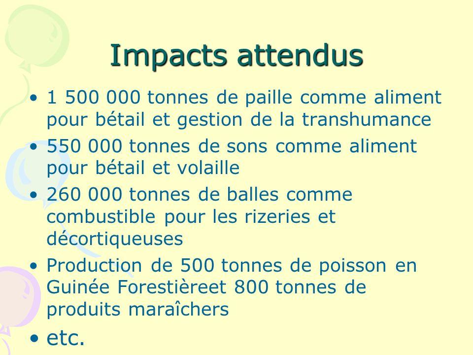 Impacts attendus 1 500 000 tonnes de paille comme aliment pour bétail et gestion de la transhumance 550 000 tonnes de sons comme aliment pour bétail et volaille 260 000 tonnes de balles comme combustible pour les rizeries et décortiqueuses Production de 500 tonnes de poisson en Guinée Forestièreet 800 tonnes de produits maraîchers etc.