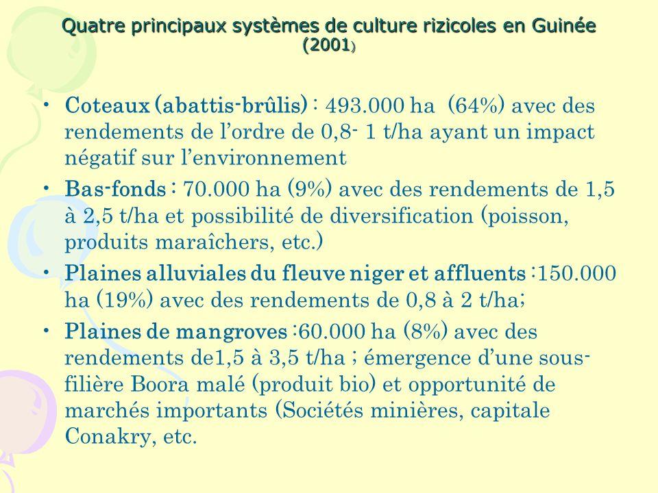 Quatre principaux systèmes de culture rizicoles en Guinée (2001 ) Coteaux (abattis-brûlis) : 493.000 ha (64%) avec des rendements de lordre de 0,8- 1 t/ha ayant un impact négatif sur lenvironnement Bas-fonds : 70.000 ha (9%) avec des rendements de 1,5 à 2,5 t/ha et possibilité de diversification (poisson, produits maraîchers, etc.) Plaines alluviales du fleuve niger et affluents :150.000 ha (19%) avec des rendements de 0,8 à 2 t/ha; Plaines de mangroves :60.000 ha (8%) avec des rendements de1,5 à 3,5 t/ha ; émergence dune sous- filière Boora malé (produit bio) et opportunité de marchés importants (Sociétés minières, capitale Conakry, etc.