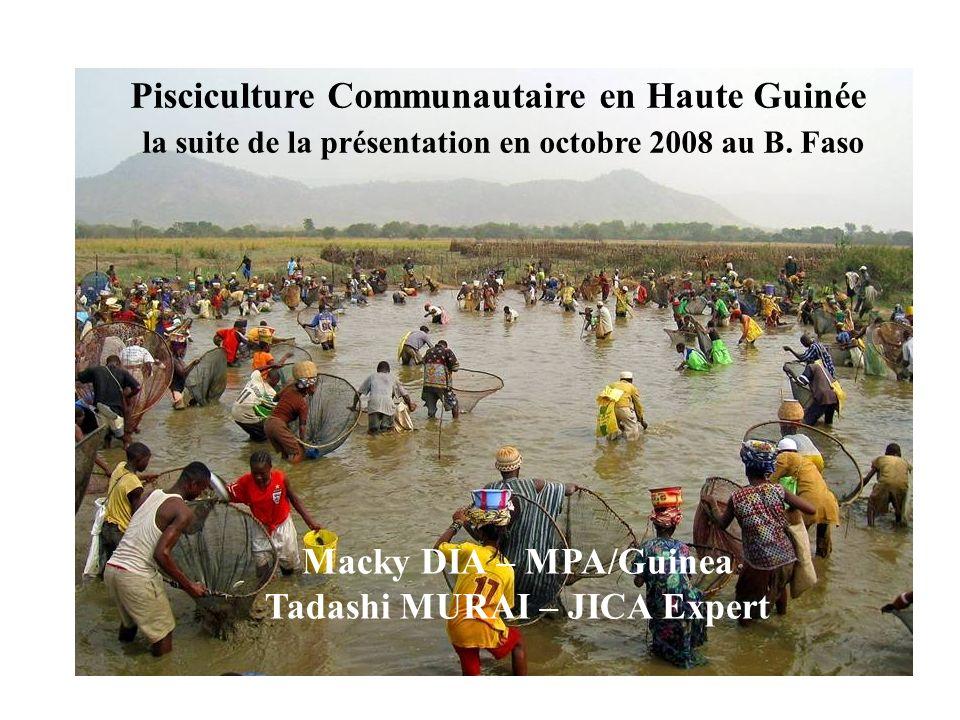 Pisciculture Communautaire en Haute Guinée la suite de la présentation en octobre 2008 au B. Faso Macky DIA – MPA/Guinea Tadashi MURAI – JICA Expert
