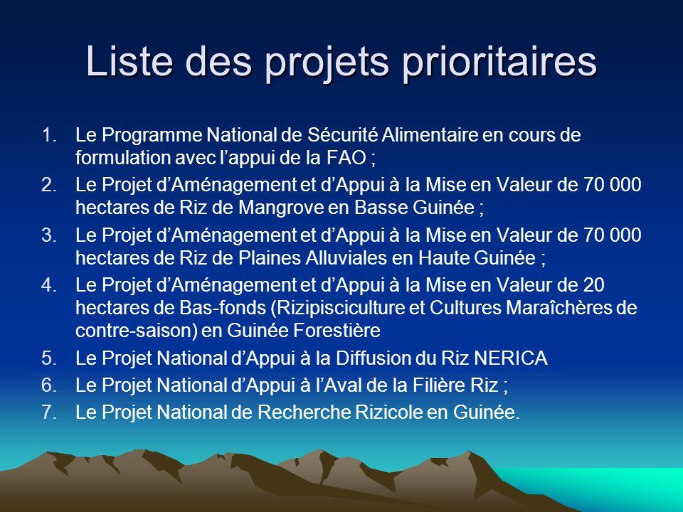 Liste des projets prioritaires 1.Le Programme National de Sécurité Alimentaire en cours de formulation avec lappui de la FAO ; 2.Le Projet dAménagemen