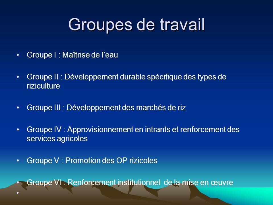 Groupes de travail Groupe I : Maîtrise de leau Groupe II : Développement durable spécifique des types de riziculture Groupe III : Développement des ma