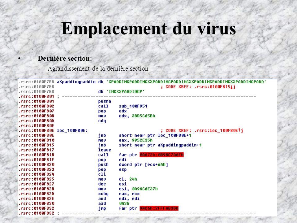 Emplacement du virus Dernière section: -Agrandissement de la dernière section