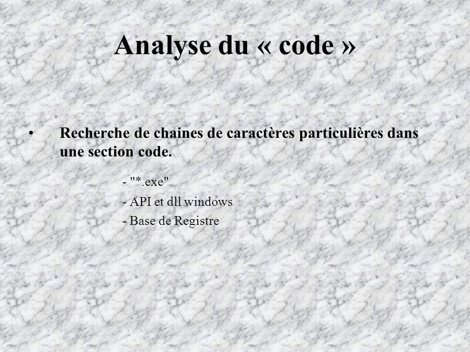 Analyse du « code » Recherche de chaines de caractères particulières dans une section code.