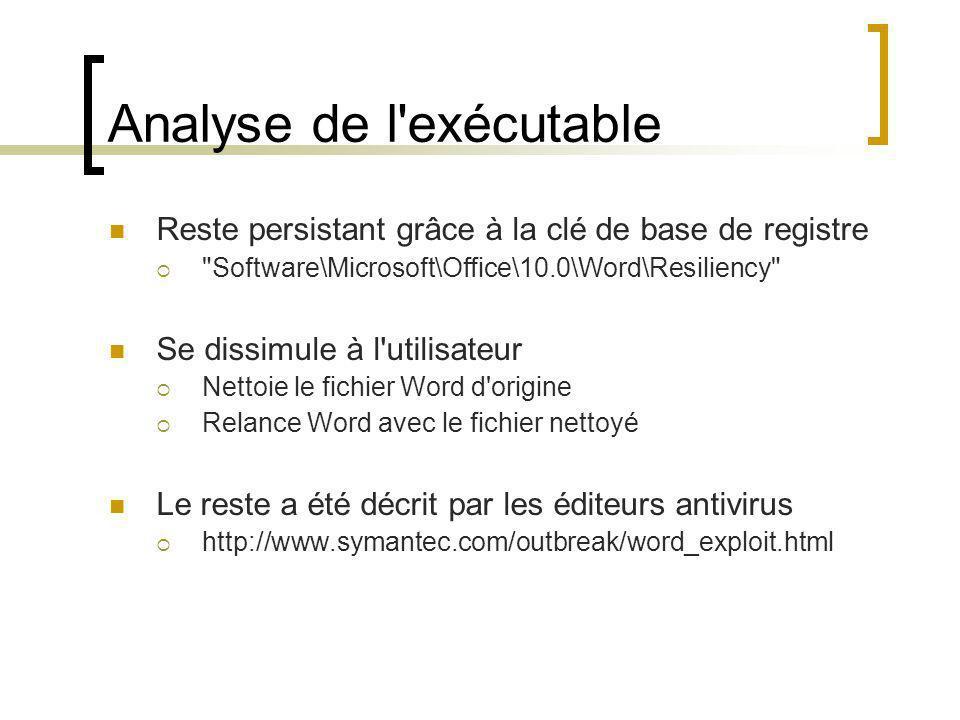 Analyse de l'exécutable Reste persistant grâce à la clé de base de registre