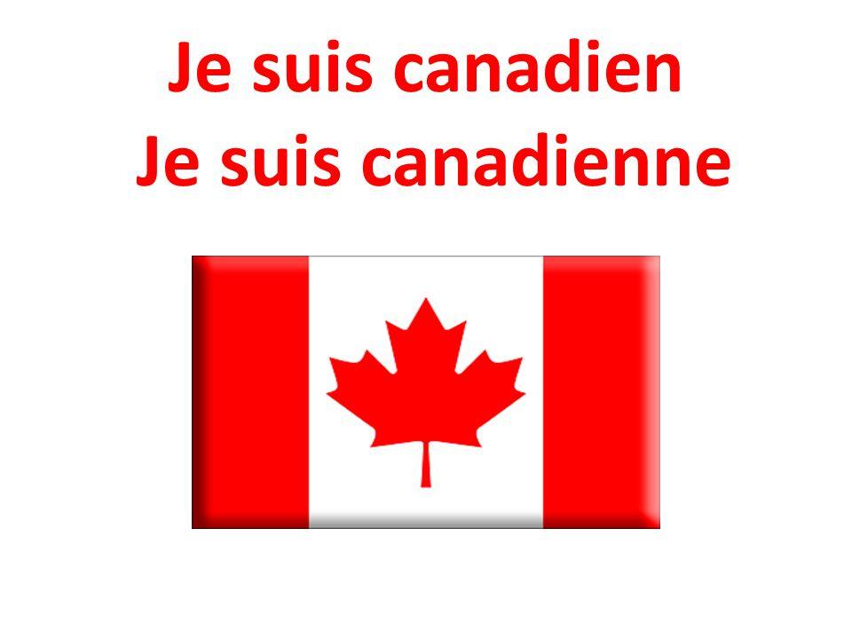 LES NATIONALITÉS LE DRAPEAU françaisfrançaise canadiencanadienne anglaisanglaise américainaméricaine
