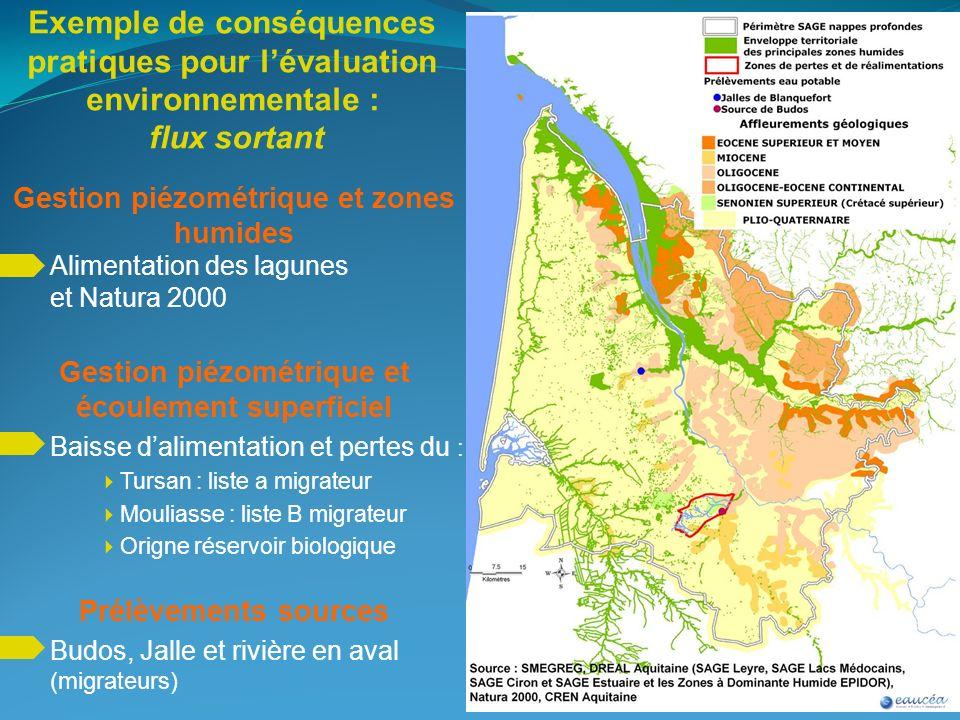 Exemple de conséquences pratiques pour lévaluation environnementale : flux sortant Gestion piézométrique et zones humides Alimentation des lagunes et