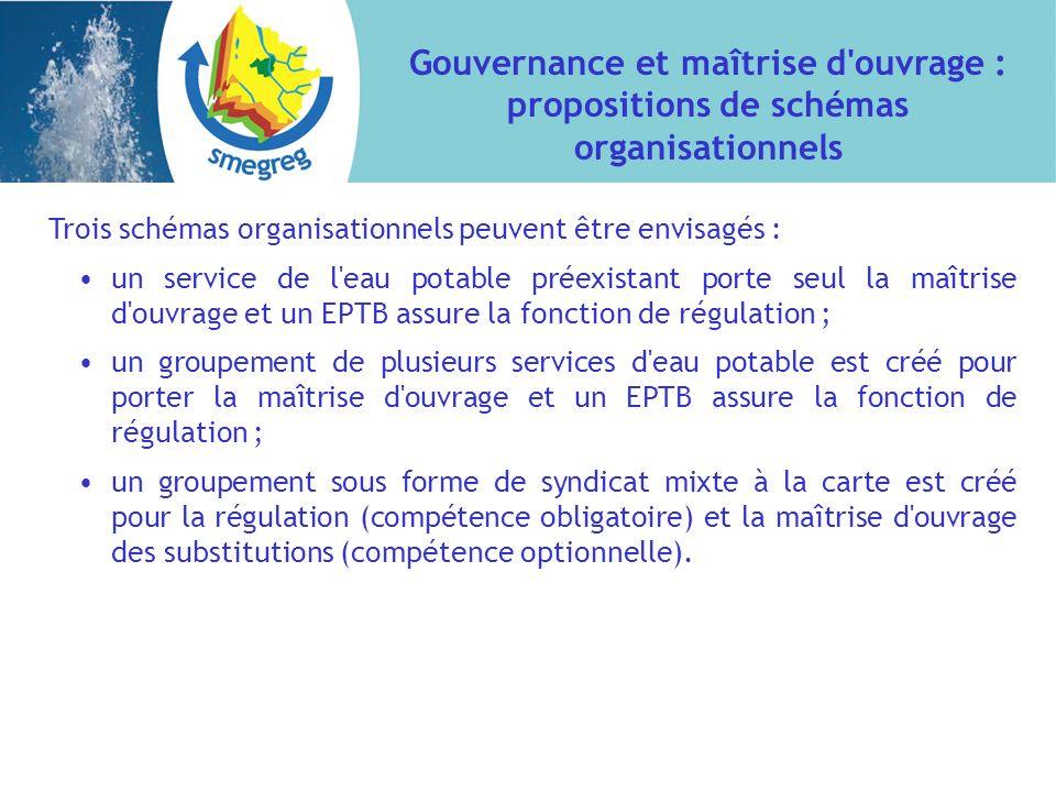 Gouvernance et maîtrise d'ouvrage : propositions de schémas organisationnels Trois schémas organisationnels peuvent être envisagés : un service de l'e