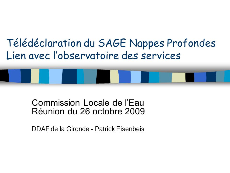 Télédéclaration du SAGE Nappes Profondes Lien avec lobservatoire des services Commission Locale de lEau Réunion du 26 octobre 2009 DDAF de la Gironde - Patrick Eisenbeis