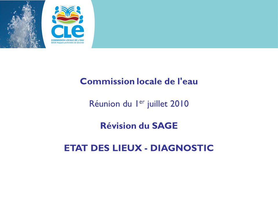 Commission locale de l eau Réunion du 1 er juillet 2010 Révision du SAGE ETAT DES LIEUX - DIAGNOSTIC
