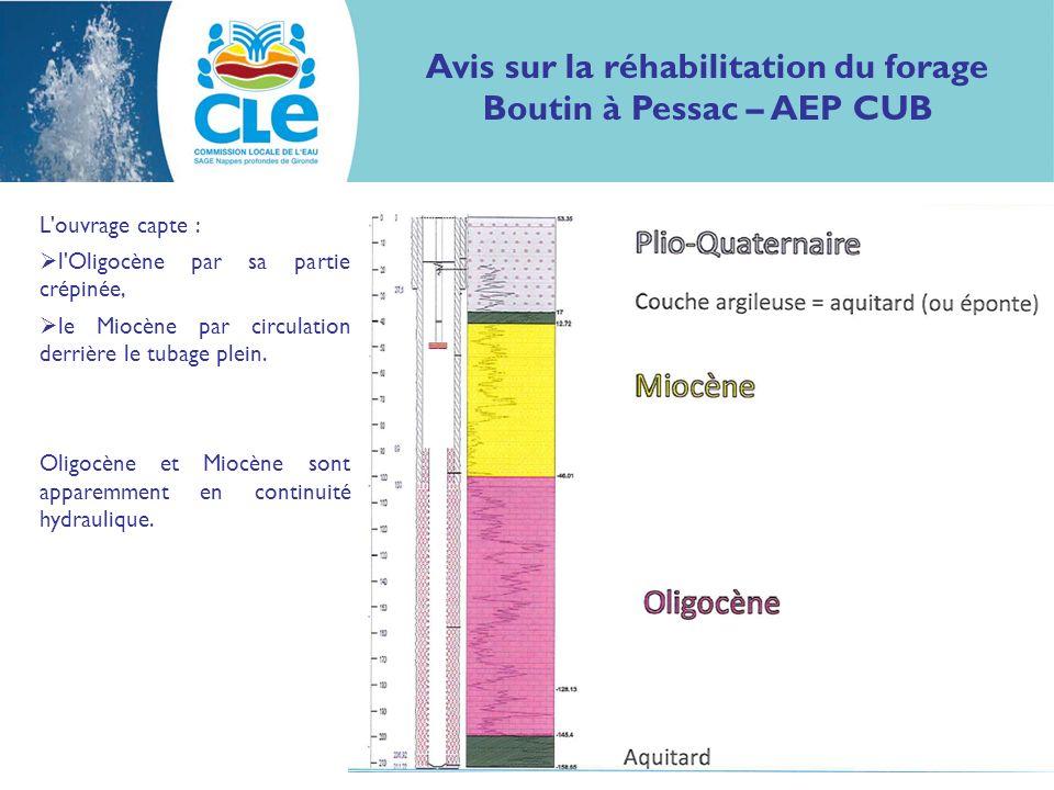 Avis sur la réhabilitation du forage Boutin à Pessac – AEP CUB L ouvrage a été réhabilité en 2009 avec la pose d une crépine face aux formations du Miocène pour ne pas perdre de productivité.