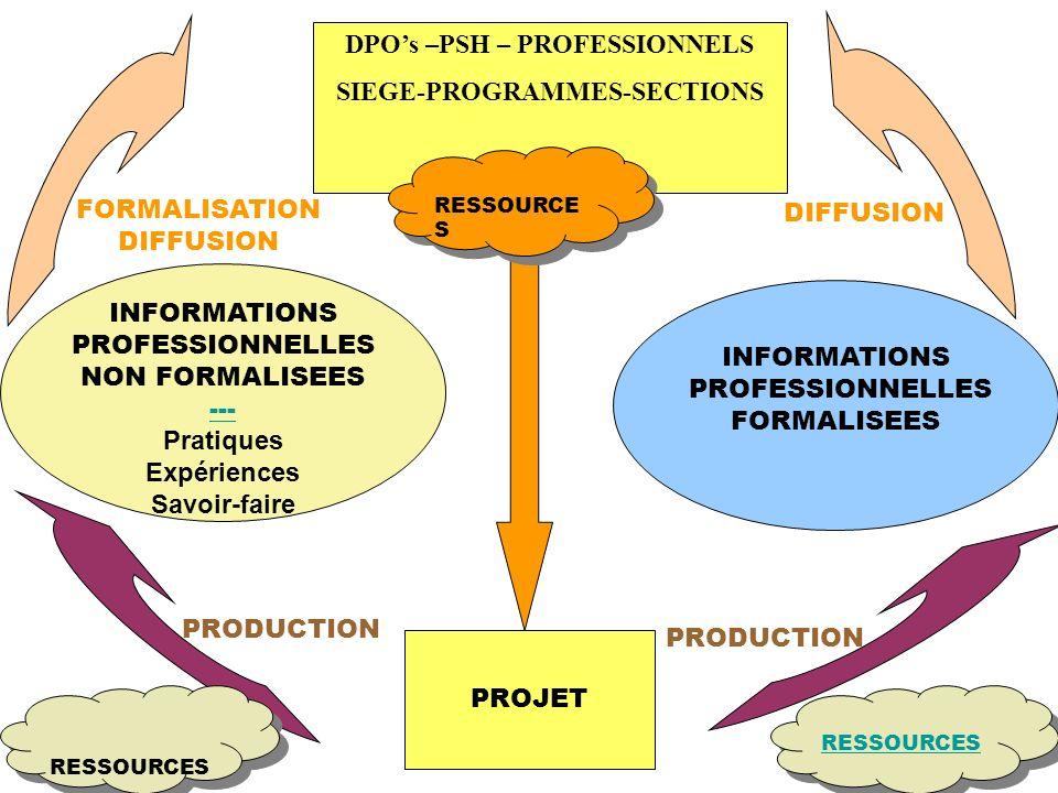 PROJET DPOs –PSH – PROFESSIONNELS SIEGE-PROGRAMMES-SECTIONS INFORMATIONS PROFESSIONNELLES NON FORMALISEES --- Pratiques Expériences Savoir-faire INFORMATIONS PROFESSIONNELLES FORMALISEES PRODUCTION FORMALISATION DIFFUSION RESSOURCES
