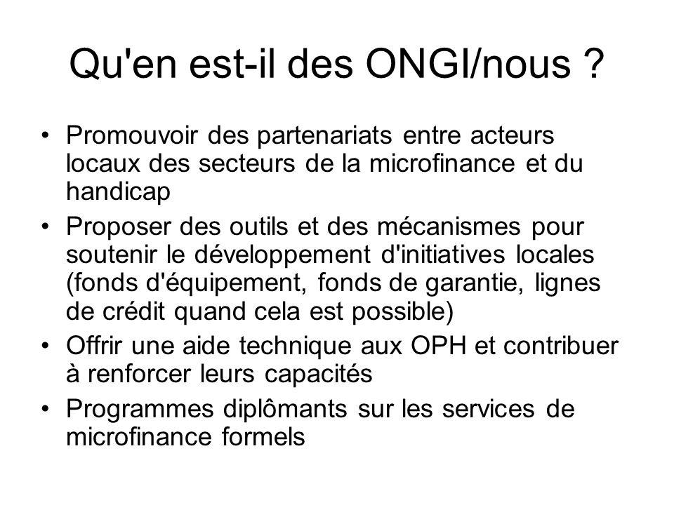 Qu'en est-il des ONGI/nous ? Promouvoir des partenariats entre acteurs locaux des secteurs de la microfinance et du handicap Proposer des outils et de