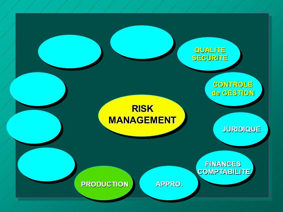 RISKMANAGEMENT APPRO.QUALITESECURITE CONTROLE de GESTION JURIDIQUE PRODUCTIONFINANCESCOMPTABILITE