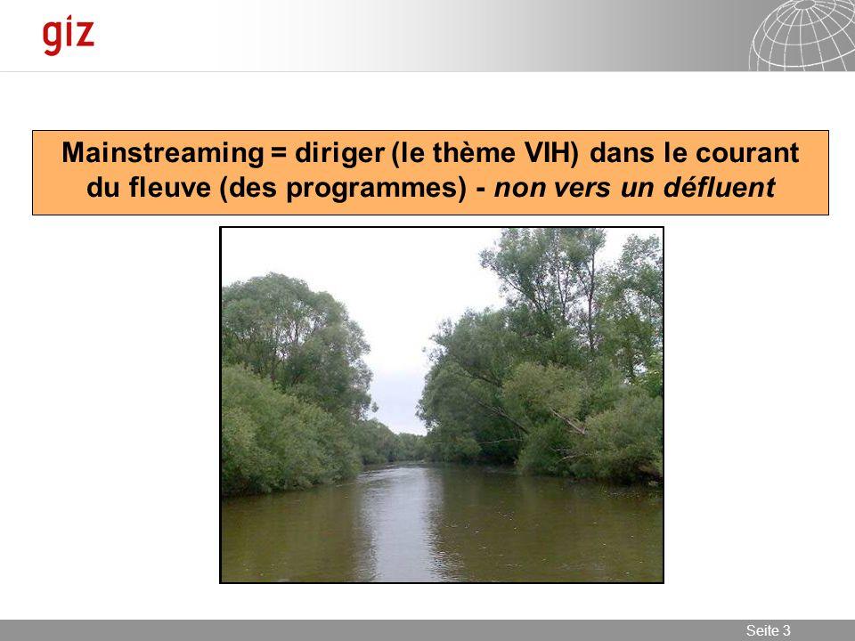 23.01.2014 Seite 3 Seite 3 Mainstreaming = diriger (le thème VIH) dans le courant du fleuve (des programmes) - non vers un défluent