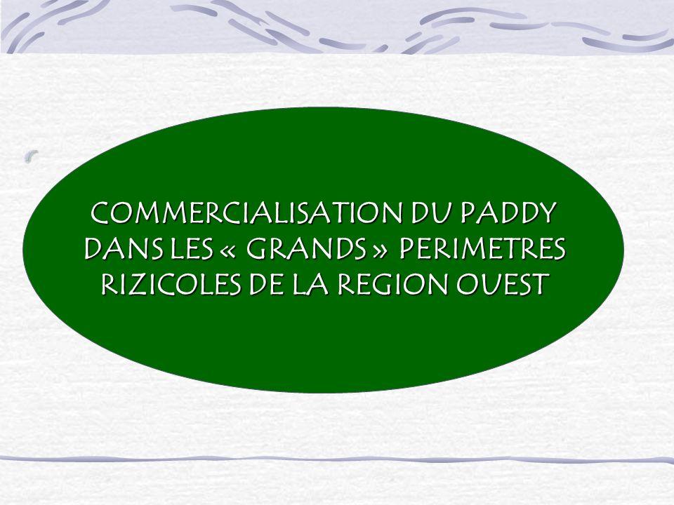 COMMERCIALISATION DU PADDY DANS LES « GRANDS » PERIMETRES DANS LES « GRANDS » PERIMETRES RIZICOLES DE LA REGION OUEST