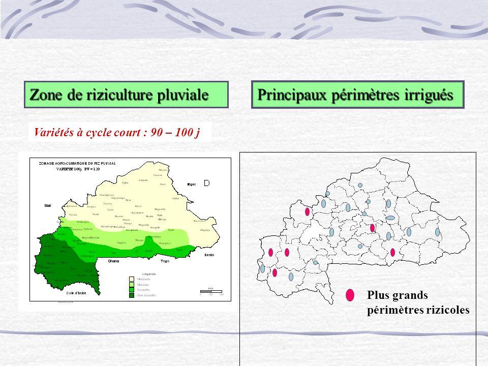Zone de riziculture pluviale Principaux périmètres irrigués Variétés à cycle court : 90 – 100 j Plus grands périmètres rizicoles